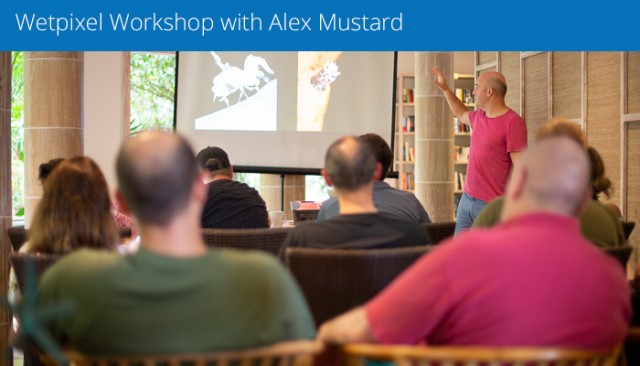 Wetpixel Underwater Photography Workshop With Alex Mustard