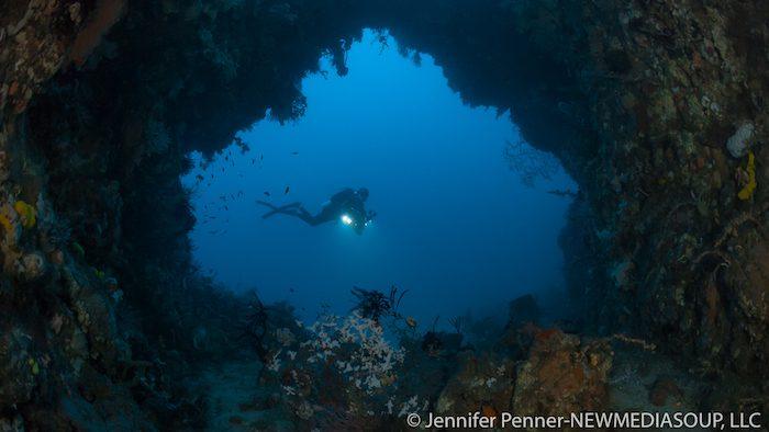 Diving Lembeh – Reefs, Wrecks and Rainforest