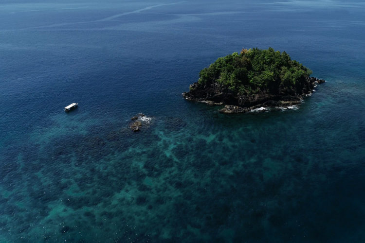 Coral Reef Diving in North Sulawesi