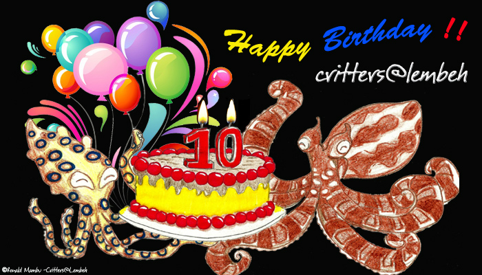 Thank You Divers World Wide for 10 Critter-filled Years of Support and Inspiration