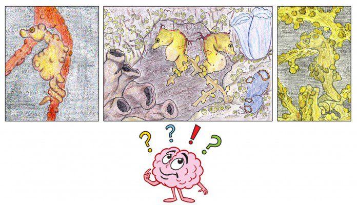 Cartoon Pygymy Seahorse