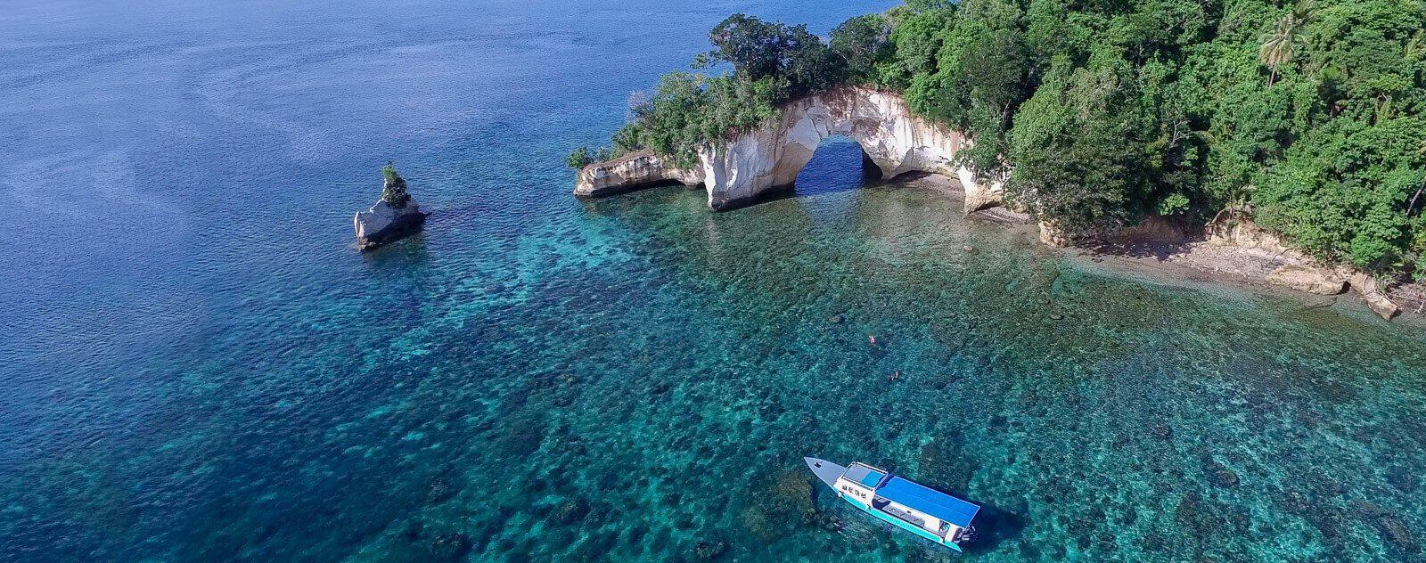 Coral Reef in Lembeh Strait