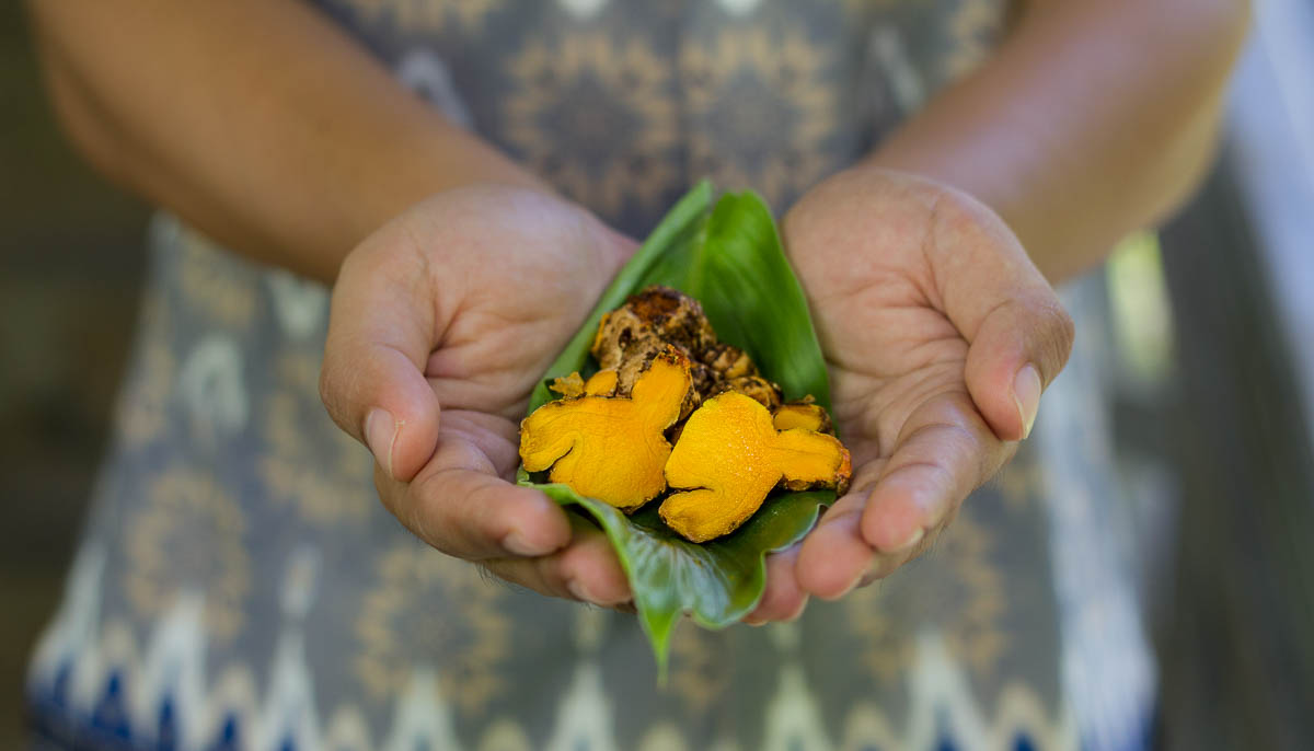 Using Home Grown Herbs to Create Classic Indonesian and Asian Cuisine