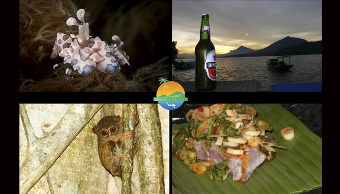 14 Useful Things for First-Time Visitors to Know About Lembeh