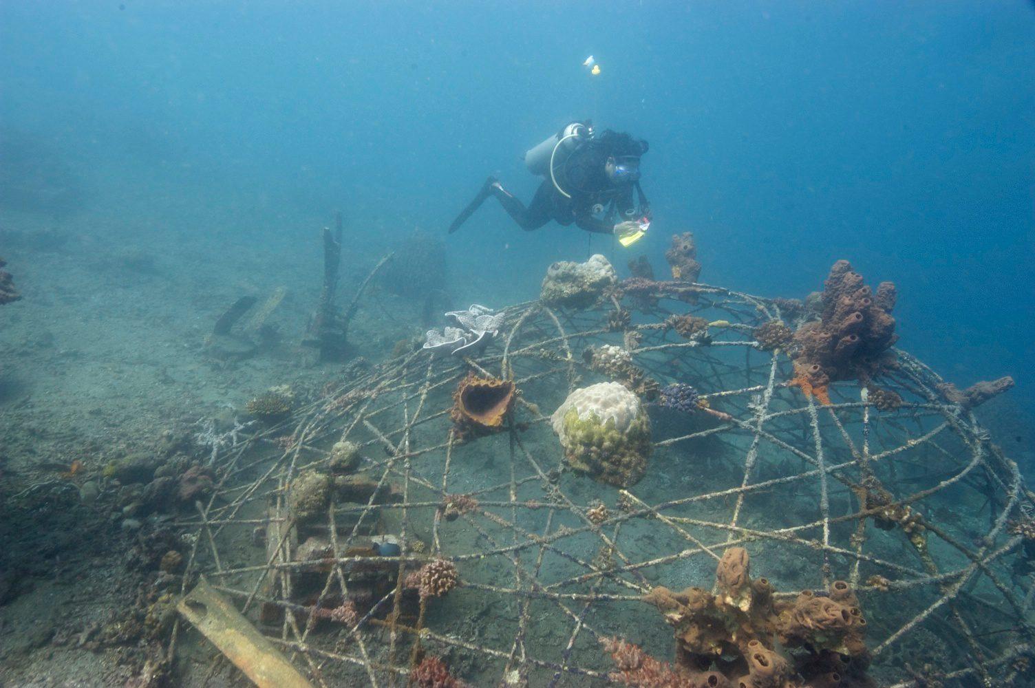 Lembeh Resort, North Sulawesi Indonesia, Lembeh Resort House Reef,