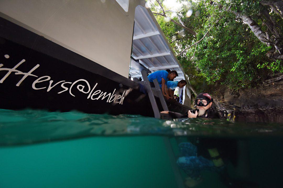 Diving in Lembeh Strait