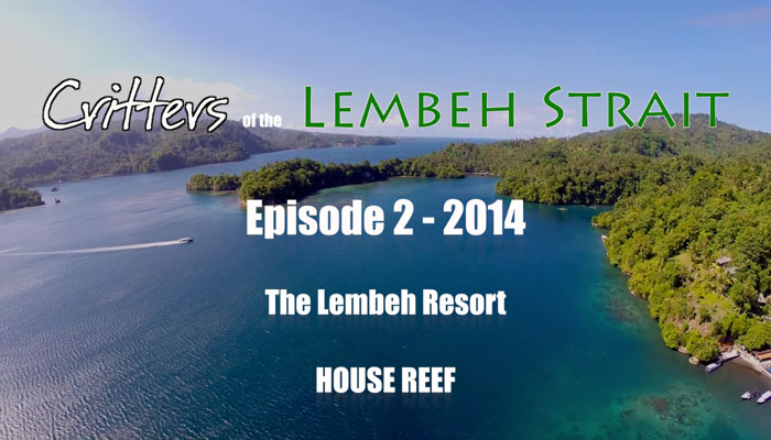 Critters Of The Lembeh Strait | Episode 2/2014