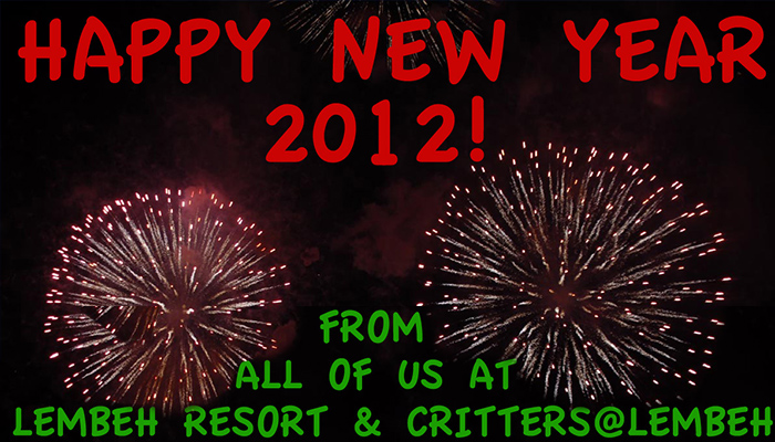 Welcoming 2012 in Style at Lembeh Resort!