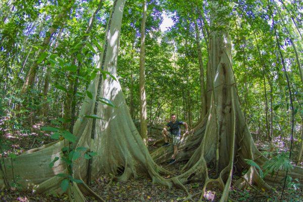 Tangkoko National Park
