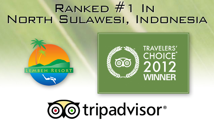 100 Excellent Reviews on TripAdvisor!