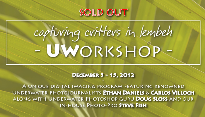 "Sold Out – ""Capturing Critters in Lembeh"" an Underwater Workshop"