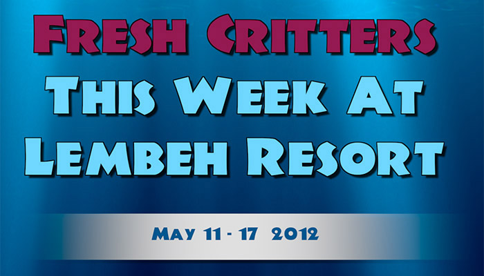 Catch our weekly Critter update produced by our in-house Photo & Video Center.
