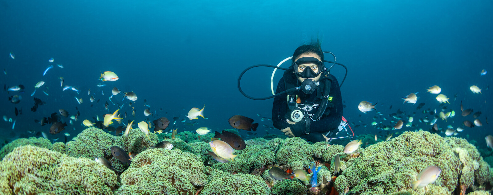 Lembeh Resort Dive Guide
