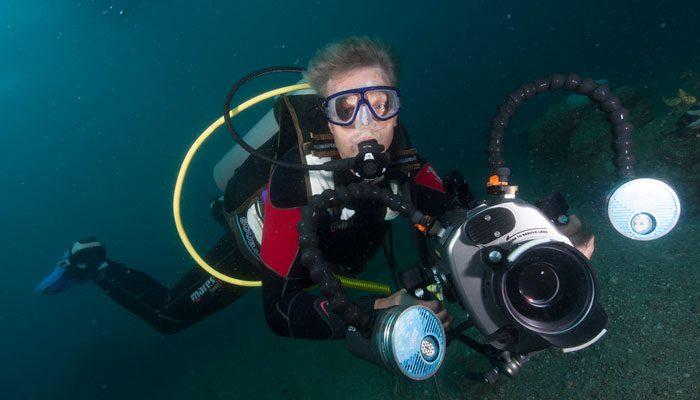 The Man Behind – Fish Mimics Mimic Octopus That Mimics Fish